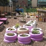Purple Jay Nursery
